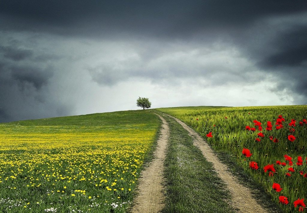 Chemin-paysage-appel-transitions